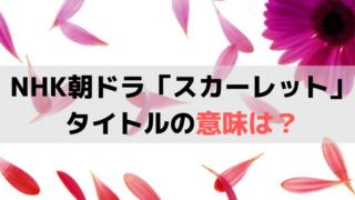 「スカーレット」のタイトルの意味は?川原喜美子の人生・情熱、陶芸の色