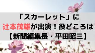 「スカーレット」に辻本茂雄が出演!役はちや子の上司、新聞編集長・平田昭三